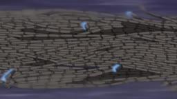 Naruto Shippuden Dublado ep 22  Anime Dublado    - Anitube